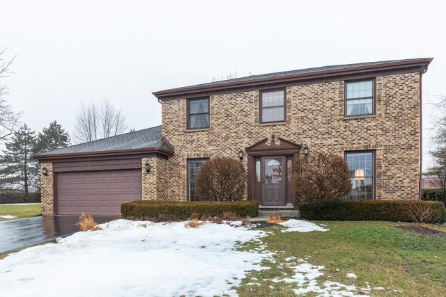 746 W Carriageway Circle, Palatine, IL 60067 (MLS #10267450) :: Baz Realty Network | Keller Williams Preferred Realty