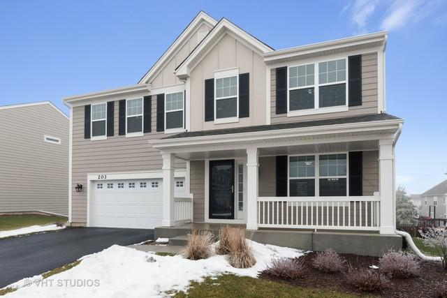 203 Pawtucket Avenue, Elgin, IL 60124 (MLS #10267487) :: Baz Realty Network   Keller Williams Preferred Realty