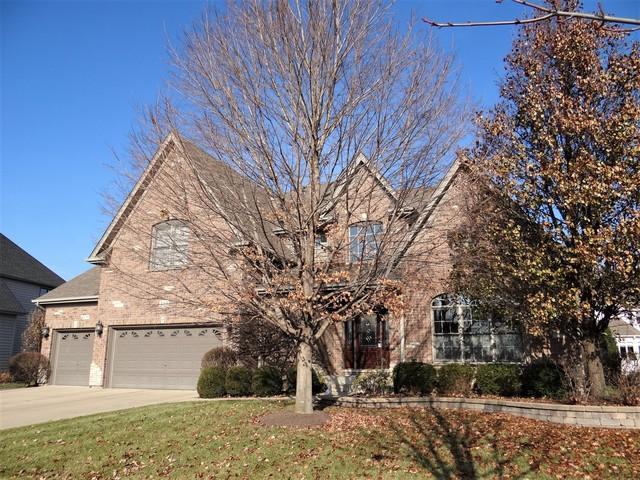 515 Eagle Brook Lane, Naperville, IL 60565 (MLS #10267830) :: The Dena Furlow Team - Keller Williams Realty