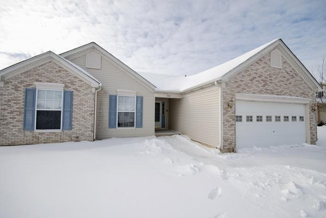 708 Summerlyn Drive, Antioch, IL 60002 (MLS #10268014) :: Baz Realty Network | Keller Williams Preferred Realty