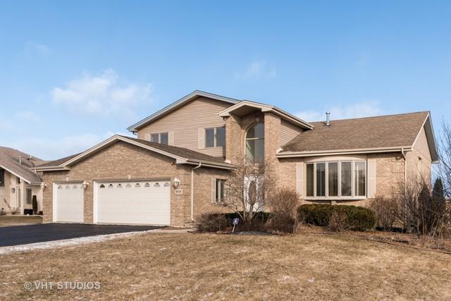 5800 Amlin Terrace, Matteson, IL 60443 (MLS #10268412) :: Baz Realty Network | Keller Williams Preferred Realty