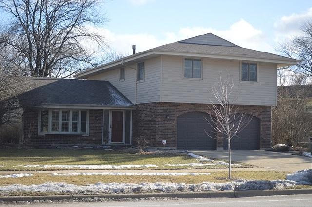 817 S Salem Drive, Schaumburg, IL 60193 (MLS #10268539) :: Baz Realty Network | Keller Williams Preferred Realty