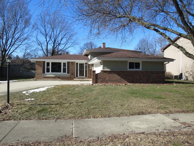 6S176 Country Drive, Naperville, IL 60540 (MLS #10268577) :: Baz Realty Network   Keller Williams Preferred Realty