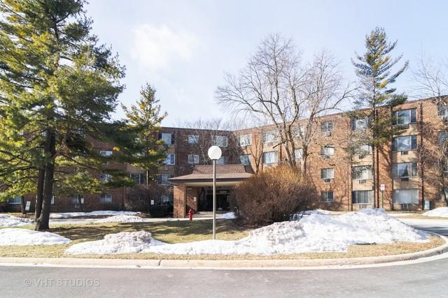 1500 Robin Circle #215, Hoffman Estates, IL 60169 (MLS #10268617) :: Baz Realty Network | Keller Williams Preferred Realty