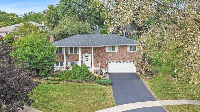 419 Hillview Court, Lemont, IL 60439 (MLS #10268843) :: HomesForSale123.com