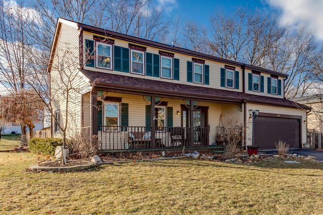 940 Tracy Court, Schaumburg, IL 60193 (MLS #10269420) :: Baz Realty Network | Keller Williams Preferred Realty