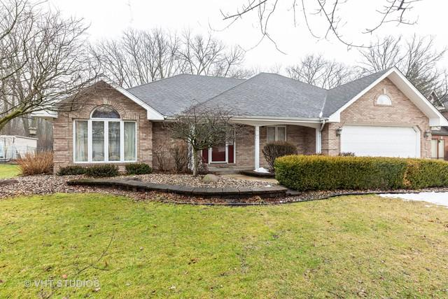 18711 Forest View Lane, Lansing, IL 60438 (MLS #10269663) :: Baz Realty Network | Keller Williams Preferred Realty