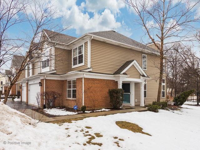 389 S Crown Court, Palatine, IL 60074 (MLS #10270342) :: Baz Realty Network   Keller Williams Preferred Realty