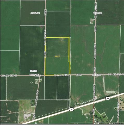1050 2180 East Road, Ashmore, IL 61912 (MLS #10270772) :: The Mattz Mega Group