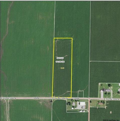 1050 N 2250 E Road, Ashmore, IL 61912 (MLS #10270813) :: The Mattz Mega Group