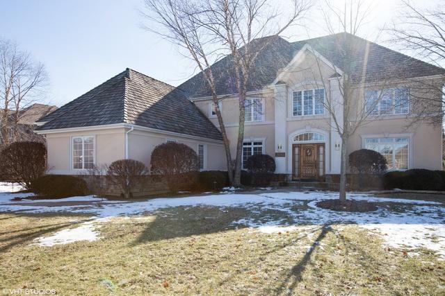 21593 W Morning Dove Court, Kildeer, IL 60047 (MLS #10271166) :: Helen Oliveri Real Estate