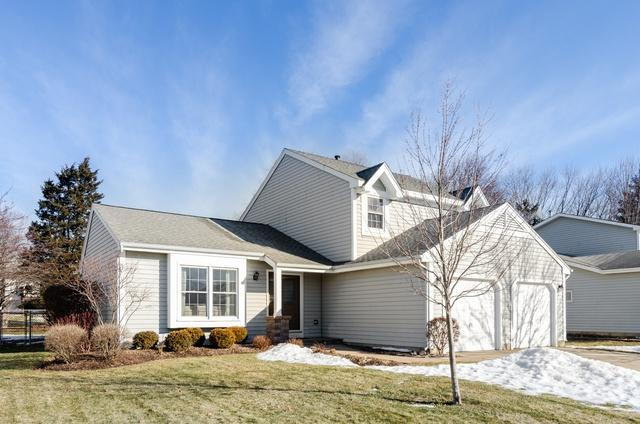 700 Concord Drive, Crystal Lake, IL 60014 (MLS #10271238) :: Baz Realty Network | Keller Williams Preferred Realty