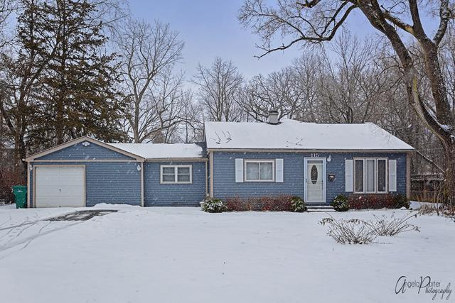 115 Pine Tree Row, Lake Zurich, IL 60047 (MLS #10271539) :: The Jacobs Group
