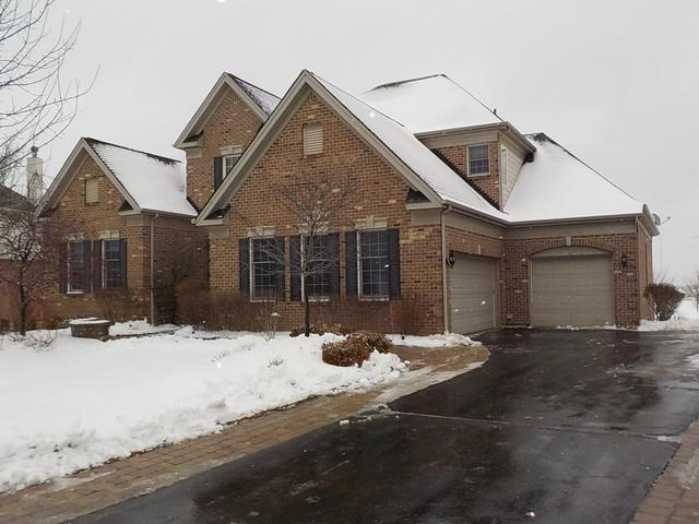 46 Tournament Drive S, Hawthorn Woods, IL 60047 (MLS #10271620) :: Baz Realty Network | Keller Williams Preferred Realty
