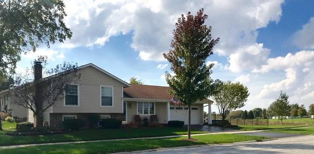 7656 W Riverton Court, Frankfort, IL 60423 (MLS #10271765) :: Baz Realty Network   Keller Williams Preferred Realty