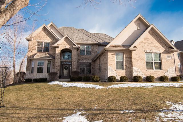 7227 Lenox Court, Long Grove, IL 60060 (MLS #10271835) :: Helen Oliveri Real Estate