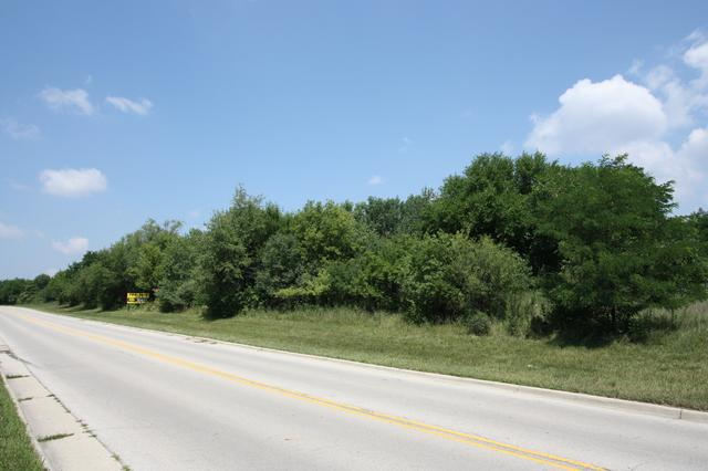 Lot 1 Mcdonough Street, Joliet, IL 60431 (MLS #10272101) :: The Dena Furlow Team - Keller Williams Realty