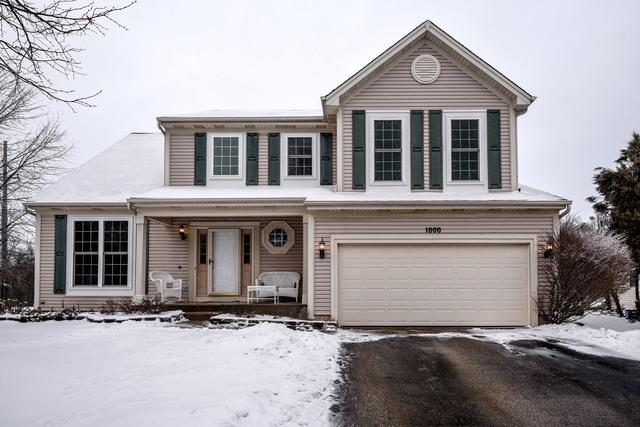 1000 Blackberry Court, Lake In The Hills, IL 60156 (MLS #10272372) :: The Mattz Mega Group