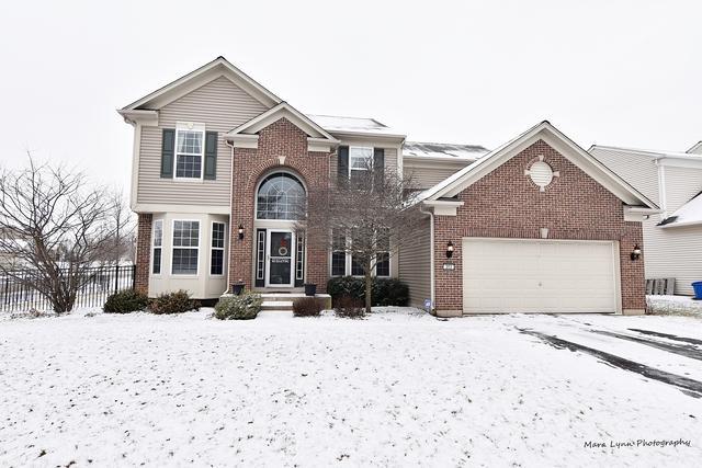 203 Chapin Way, Oswego, IL 60543 (MLS #10272473) :: Baz Realty Network | Keller Williams Preferred Realty