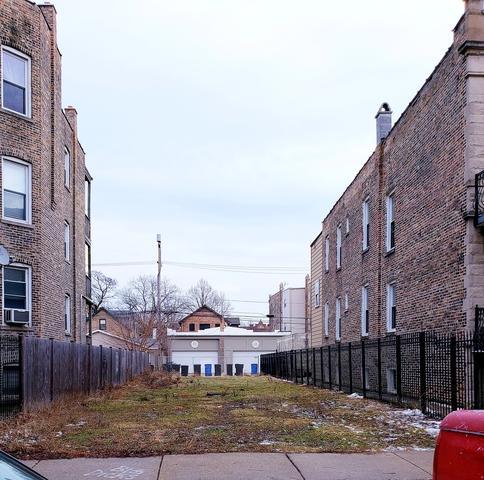 2113 N Spaulding Avenue, Chicago, IL 60647 (MLS #10272652) :: Domain Realty