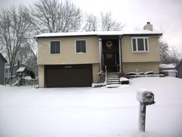 1065 Ridgewood Drive, Bolingbrook, IL 60440 (MLS #10272658) :: The Wexler Group at Keller Williams Preferred Realty