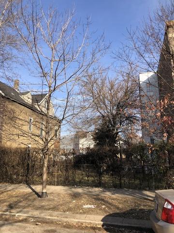 2956 W Nelson Street, Chicago, IL 60618 (MLS #10272773) :: Baz Realty Network | Keller Williams Preferred Realty