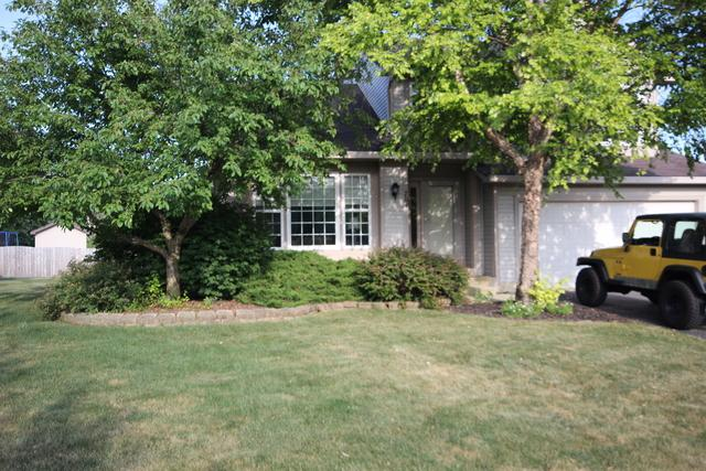 704 Cornell Drive, Oswego, IL 60543 (MLS #10272936) :: The Dena Furlow Team - Keller Williams Realty