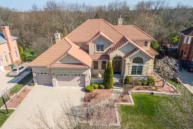 1520 Darien Club Drive, Darien, IL 60561 (MLS #10272985) :: Helen Oliveri Real Estate