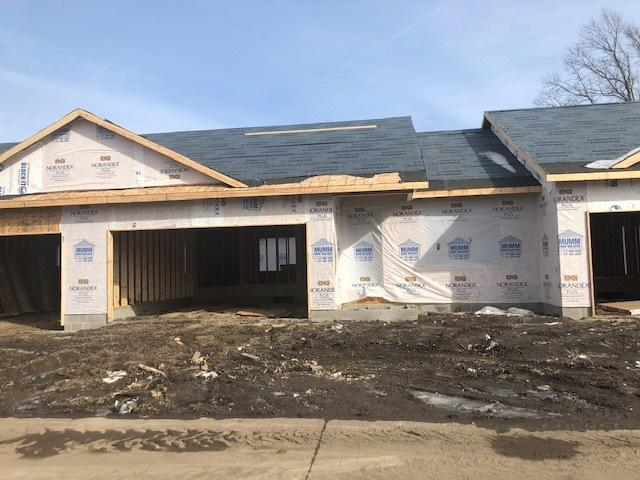 114 Sunset Court #0, Fisher, IL 61843 (MLS #10273018) :: Ryan Dallas Real Estate