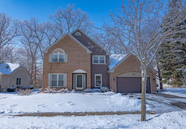 731 Red Oak Drive, Bartlett, IL 60103 (MLS #10273115) :: Baz Realty Network   Keller Williams Preferred Realty