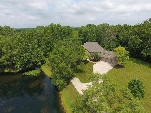 24647 S Ford Road, Channahon, IL 60410 (MLS #10273353) :: The Mattz Mega Group
