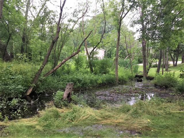 Lot 9 64th Place, Paddock Lake, WI 53168 (MLS #10273449) :: Helen Oliveri Real Estate