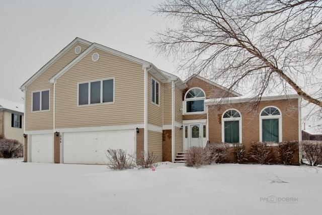 584 Williams Way, Vernon Hills, IL 60061 (MLS #10273559) :: Baz Realty Network | Keller Williams Preferred Realty