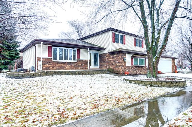 738 Barber Lane, Joliet, IL 60435 (MLS #10273602) :: The Wexler Group at Keller Williams Preferred Realty