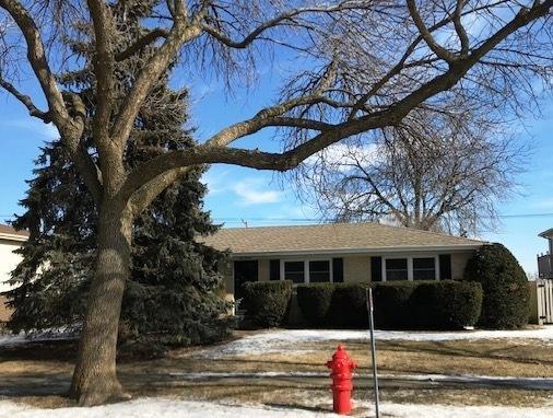 511 Wingate Drive, Schaumburg, IL 60193 (MLS #10273937) :: Baz Realty Network | Keller Williams Preferred Realty