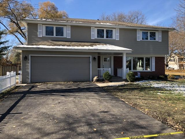 1310 N Dryden Avenue, Arlington Heights, IL 60004 (MLS #10273953) :: Baz Realty Network | Keller Williams Preferred Realty