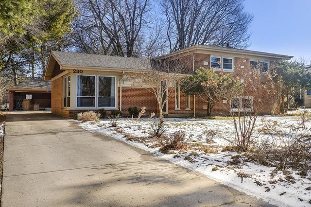 230 Locust Road, Wilmette, IL 60091 (MLS #10274050) :: The Spaniak Team