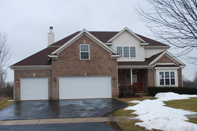 449 Megan Place, Winthrop Harbor, IL 60096 (MLS #10274057) :: Baz Realty Network | Keller Williams Preferred Realty