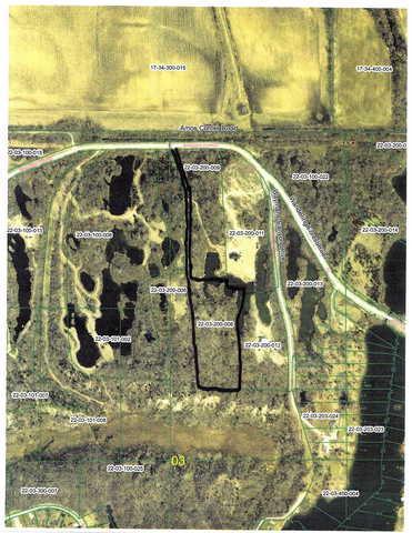 000 Wandering Forest Rd., Oakwood, IL 61858 (MLS #10274278) :: The Mattz Mega Group