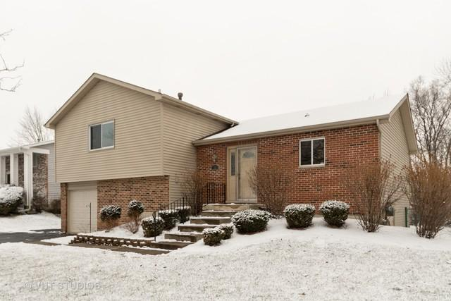 32 Willow Road, Matteson, IL 60443 (MLS #10274404) :: Lewke Partners
