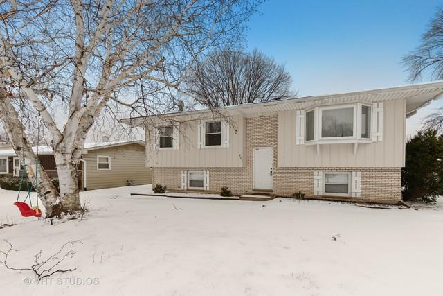 1007 18th Street N, Zion, IL 60099 (MLS #10274481) :: The Dena Furlow Team - Keller Williams Realty