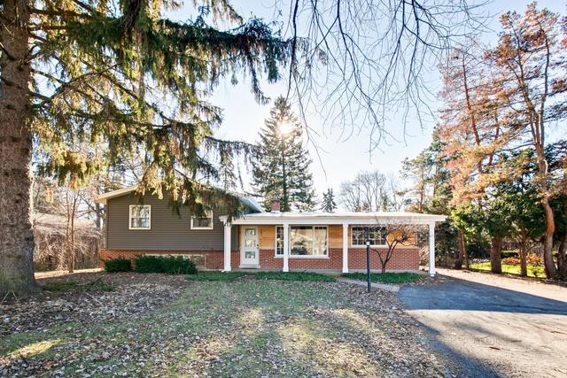 1405 W Hawthorne Street, Arlington Heights, IL 60005 (MLS #10274488) :: Baz Realty Network | Keller Williams Preferred Realty