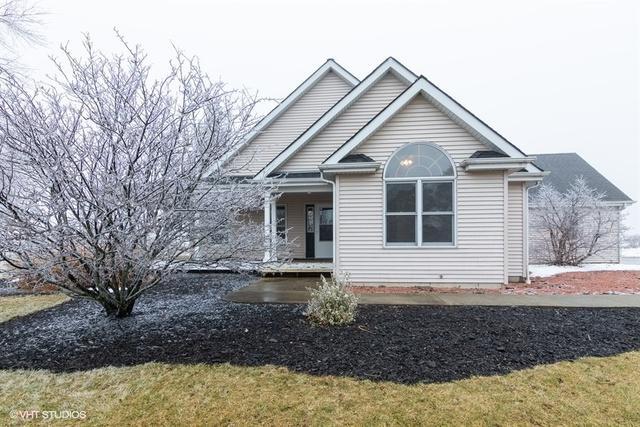 10N048 Kendall Road, Elgin, IL 60124 (MLS #10274626) :: Ryan Dallas Real Estate