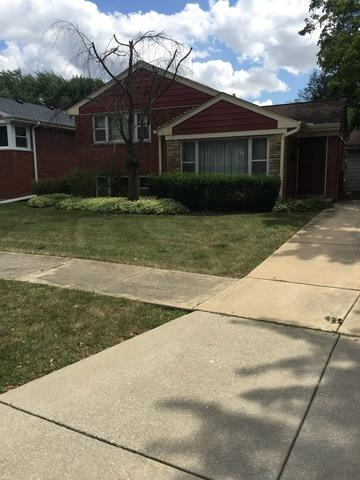237 Amherst Avenue, Des Plaines, IL 60016 (MLS #10274747) :: Baz Realty Network | Keller Williams Preferred Realty