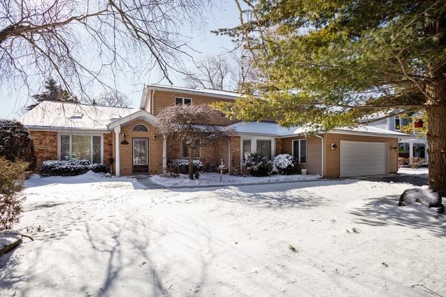 351 W Michigan Avenue, Palatine, IL 60067 (MLS #10274752) :: Baz Realty Network   Keller Williams Preferred Realty