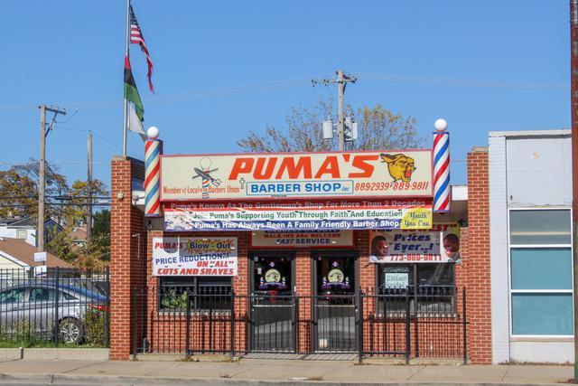 5706 North Avenue, Chicago, IL 60639 (MLS #10275103) :: The Mattz Mega Group