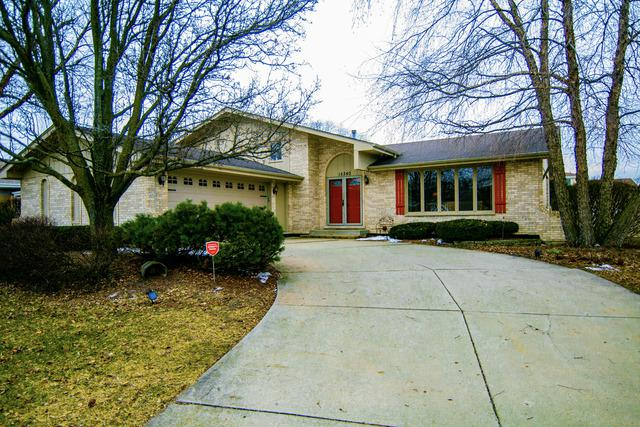 15340 Paddock Lane, Homer Glen, IL 60491 (MLS #10275409) :: Baz Realty Network | Keller Williams Preferred Realty