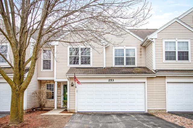 253 Rainier Way, Fox Lake, IL 60020 (MLS #10275523) :: Helen Oliveri Real Estate