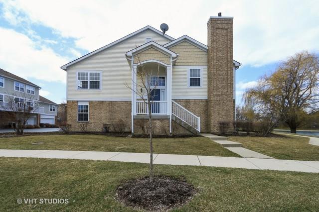 1220 Georgetown Way #1220, Vernon Hills, IL 60061 (MLS #10275525) :: Baz Realty Network | Keller Williams Preferred Realty