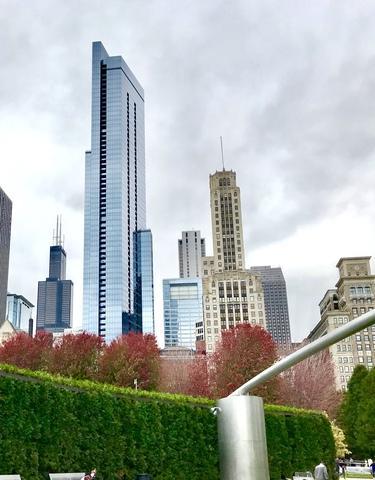 60 E Monroe Street #2503, Chicago, IL 60603 (MLS #10275709) :: Century 21 Affiliated
